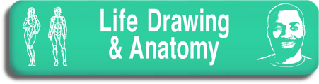 Life Drawing &                           Anatomy Program Art Animation School Toronto                           Canada